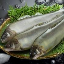 香魚(公) | 楊家海鮮王國