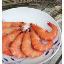 熟白蝦 | 楊家海鮮王國
